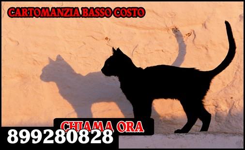 cartomanzia 899280828