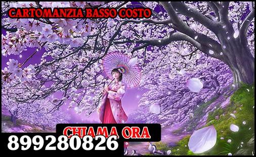 cartomanzia 899280826